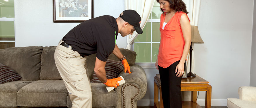 Des Moines, IA carpet upholstery cleaning